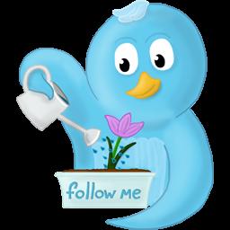 spring flower follow me