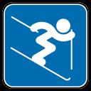 Alpine Skiing Jump-128