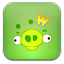 Angry Birds Green icon