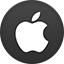 Apple2 flat circle Icon