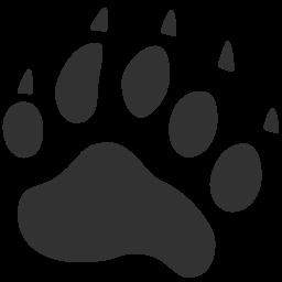 Bear-256