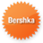 Bershka orange logo icon