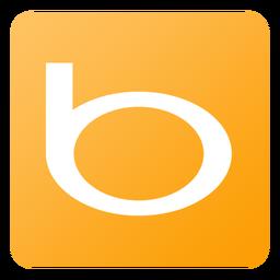 Bing-256