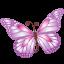 Butterfly Purple-64