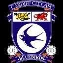 Cardiff City Logo-128