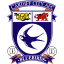 Cardiff City Logo Icon