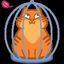 Cat Cage-128