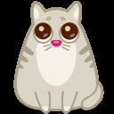 Cat Eyes-128