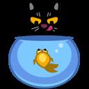 Cat Fish-128