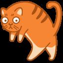 Cat Walk-128