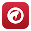 Comodo Dragon iOS7 icon