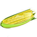 Corn-128