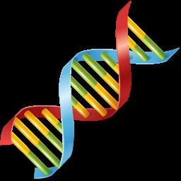 DNA-256