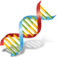 DNA-64
