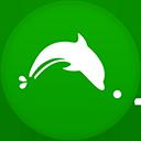 Dolphin2 flat circle-128