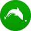 Dolphin2 flat circle icon