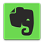 Evernote colorful icon