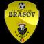 Fc Brasov Logo Icon