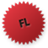 Flash logo Icon