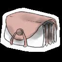 Folder 2-128