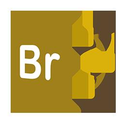 Freeform Bridge Icon Download Adobecs6 Urbanized Icons Iconspedia