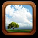 Gallery Frame Tree