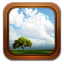 Gallery Frame Tree Icon