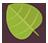 Green Leaf-48