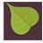 Leaf Green-48
